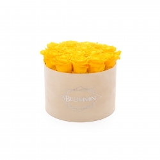 LARGE BLUMMIN NUDE VELVET BOX WITH YELLOW ROSES