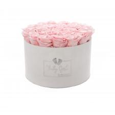 BABY GIRL - WHITE VELVET BOX WITH 25 BRIDAL PINK ROSES