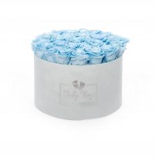 BABY BOY - LIGHT BLUE VELVET BOX WITH 25 BABY BLUE ROSES