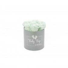 BABY BOY - HELEHALL karp MINT roosidega (7 roosiga)