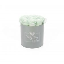 BABY BOY - HELEHALL karp MINT roosidega (9 roosiga)