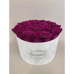 EXTRA LARGE VELVET LIGHT GREY BOX WITH VINTAGE PLUM ROSES