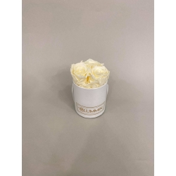 XS BLUMMiN WHITE BOX WITH CHAMPAGNE ROSES