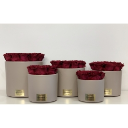 BEIGE CERAMIC POT WITH CHERRY ROSES
