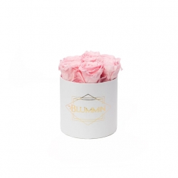 SMALL BLUMMiN - WHITE BOX WITH BRIDAL PINK ROSES