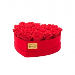 RED VELVET HEART WITH VIBRANT RED ROSES (21-23 ROSES)