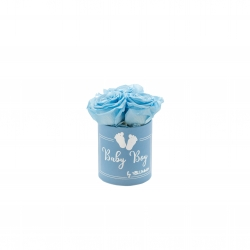BABY BOY - sinine karp BABY BLUE roosidega (3 roosiga)