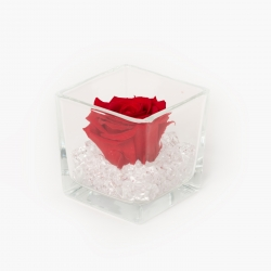 GLASS VASE WITH VIBRANT RED ROSE AND CRYSTALS
