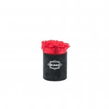 XS BLUMMIN - BLACK VELVET BOX WITH VIBRANT RED ROSES