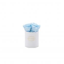XS BLUMMIN - WHITE BOX WITH BABY BLUE ROSES