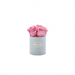 XS light grey box with VINTAGE PINK roses