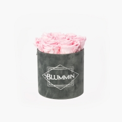SMALL VELVET DARK GREY BOX WITH BRIDAL PINK ROSES