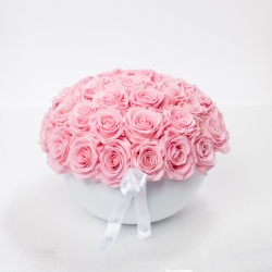 WHITE CERAMIC POT WITH 29-33 BRIDAL PINK ROSES