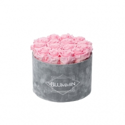 LARGE BLUMMIN LIGHT GREY VELVET BOX WITH BRIDAL PINK ROSES