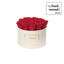 """LARGE """"ARMSALE VANAEMALE"""" - kreemikasvalge karp ROSEBERRY roosidega"""