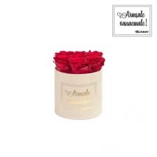"""SMALL """"ARMSALE VANAEMALE"""" - nude sametkarp ROSEBERRY roosidega"""