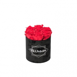 SMALL VELVET BLACK BOX WITH VIBRANT RED ROSES