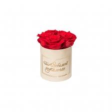 ЛЮБИМОЙ МАМОЧКЕ - MIDI NUDE VELVET BOX WITH VIBRANT RED ROSES