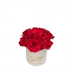 BOUQUET WITH 7 ROSES - MIDI CREAMY BOX WITH VIBRANT RED ROSES