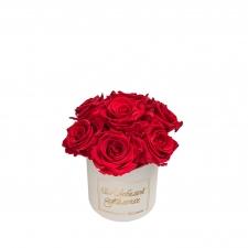 ЛЮБИМОЙ МАМОЧКЕ BOUQUET WITH 7 ROSES - MIDI BLUMMiN CREAMY BOX WITH VIBRANT RED ROSES