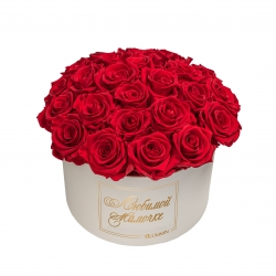 BOUQUET WITH 25 ROSES - LARGE CREAMY BOX WITH VIBTANT RED ROSES