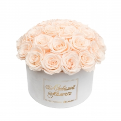 ЛЮБИМОЙ МАМОЧКЕ BOUQUET WITH 25 ROSES - LARGE WHITE VELVET BOX WITH ICE PINK ROSES