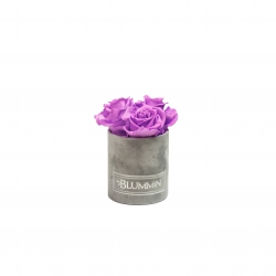 XS LIGHT GREY VELVET BOX WITH VIOLET VAIN ROSES