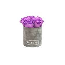 MIDI LIGHT GREY VELVET BOX WITH VIOLET VAIN ROSES