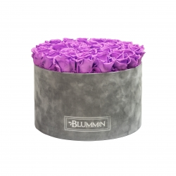 EXTRA LARGE LIGHT GREY VELVET BOX WITH VIOLET VAIN ROSES