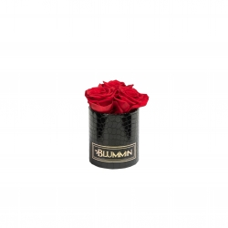 XS BLACK LEATHER BOX WITH VIBRANT RED ROSES