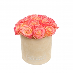 BOUQUET WITH 15 ROSES - MEDIUM NUDE VELVET BOX WITH APRICOT ROSES