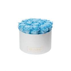 LARGE BLUMMIN - WHITE BOX WITH BABY BLUE ROSES