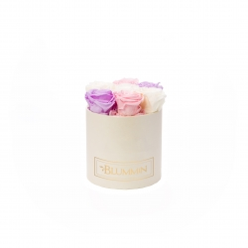 SMALL BLUMMiN - KREEMIKASVALGE KARP MIX (BABY LILLY, BRIDAL PINK, CHAMPAGNE) ROOSIDEGA