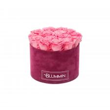 LARGE FUCHSIA VELVET BOX WITH BABY PINK ROSES