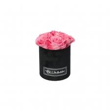 MIDI BLACK VELVET BOX WITH BABY PINK ROSES