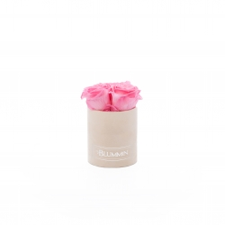 XS BLUMMiN - nude sametkarp BABY PINK roosidega