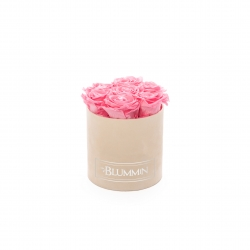 SMALL BLUMMiN - NUDE VELVET BOX WITH BABY PINK ROSES