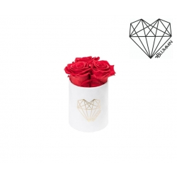 XS LOVE - WHITE VELVET BOX WITH VIBRANT RED ROSES