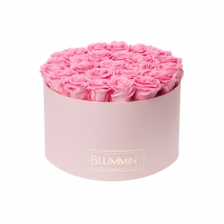 EXTRA LARGE BLUMMIN LIGHT PINK BOX WITH BABY PINK ROSES