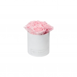 MIDI BLUMMiN - WHITE VELVET BOX WITH BRIDAL PINK ROSES