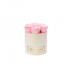 SMALL BLUMMiN - CREAM WHITE BOX WITH BRIDAL PINK ROSES