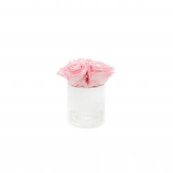 XS BLUMMIN - WHITE VELVET BOX WITH BRIDAL PINK ROSES