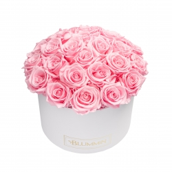 BOUQUET WITH 25 ROSES - LARGE WHITE BOX WITH BRIDAL PINK ROSES