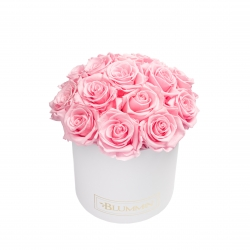BOUQUET WITH 15 ROSES - MEDIUM WHITE BOX WITH BRIDAL PINK ROSES