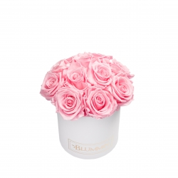 BOUQUET WITH 11 ROSES - SMALL WHITE BOX WITH BRIDAL PINK ROSES
