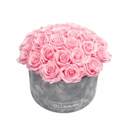 BOUQUET WITH 25 ROSES - LARGE LIGHT GREY VELVET BOX WITH BRIDAL PINK ROSES