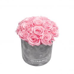 BOUQUET WITH 15 ROSES - MEDIUM LIGHT GREY VELVET BOX WITH BRIDAL PINK ROSES