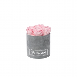 SMALL VELVET LIGHT GREY BOX WITH BRIDAL PINK ROSES