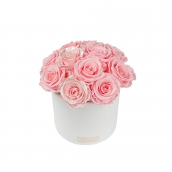 BOUQUET WITH 11 ROSES - WHITE CERAMIC POT WITH  BRIDAL PINK & PEARL PINK ROSES