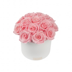 BOUQUET WITH 15 ROSES - WHITE CERAMIC POT WITH BRIDAL PINK ROSES